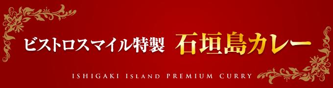 ビストロスマイル特製石垣島カレー